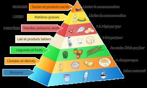 la-pyramide-alimentaire-1